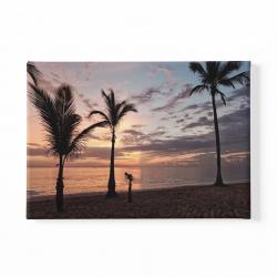 Залез и палми