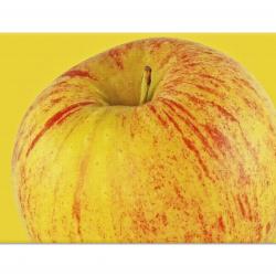 Ябълка на жълт фон